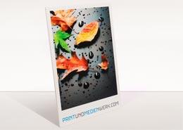 Plattendirektdruck - Plattendruck - Direktdruck auf Forex mit Spot Lack