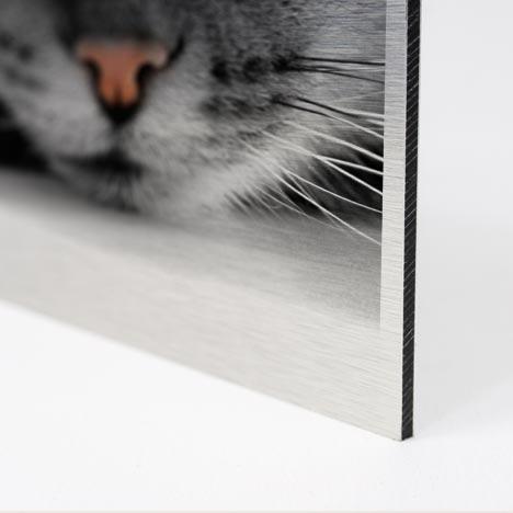 p m print und medien gmbh direktdruck plattendruck auf. Black Bedroom Furniture Sets. Home Design Ideas
