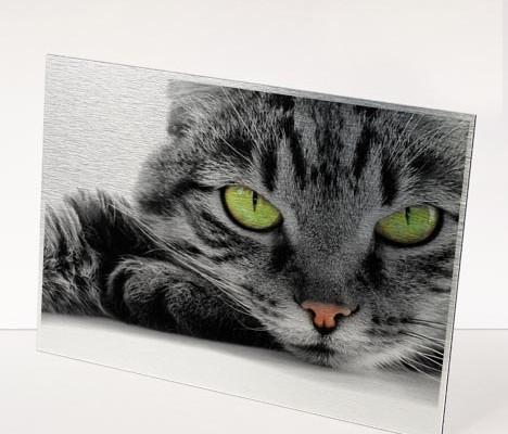 Fotodruck im Direktdruck / Plattendirektdruck ( Plattendruck )auf Alu Dibond im Plattendirektdruck / Direktdruck Verfahren
