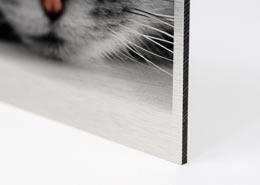 Ihr Fotodruck auf Alu Dibond im Plattendruck - Plattendirektdruck - Direktdruck