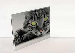 Ihr Fotodruck auf Aludibond, auf Forex, auf Acrylglas im Plattendirketdruck ( Plattendruck ) / Direktdruck Verfahren