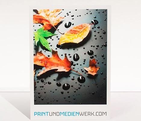 Direktdruck / Plattendirektdruck auf Forex mit Spot Lack