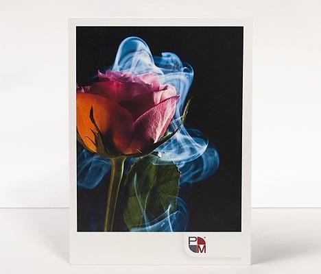 Direktdruck auf Acrylglas, Direktdruck hinter Acrylglas, Plattendruck auf Acrylglas, Plattendruck hinter Acrylglas, Direktdruck auf Forex, Plattendruck auf Forex