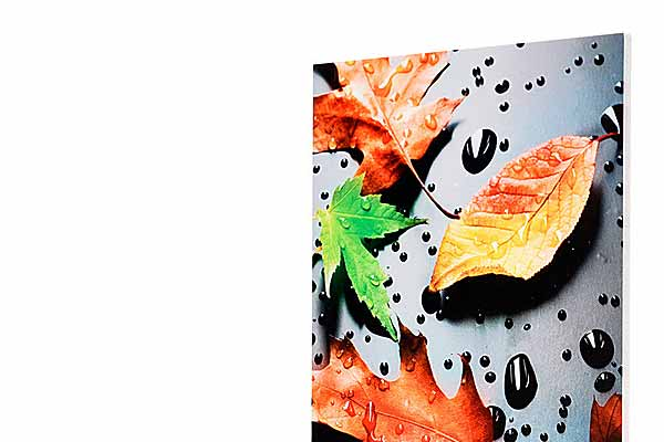 Hochwertiger 7-Farb UV Direktdruck auf Forex Platten
