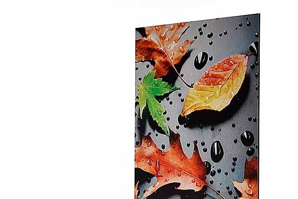 Gestalten Sie Ihr Foto oder Motiv Online und lassen es bei uns im UV Direktdruck, Plattendruck auf gebürstetem AluDibond bedrucken